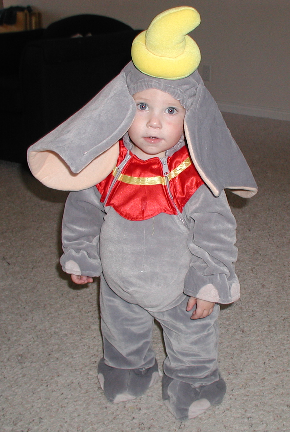 3785b886e506 Dumbo Baby Costume - Meningrey